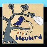 Songtexte von Bleubird - RIP U$A (The Bird Fleu)