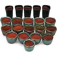 Happy Bonsai 20Mini vasi ceramica smaltata