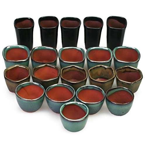 Happy Bonsaï 20 Mini Pots de vernis