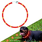 Hunde Leuchthalsband LED Halsband Hundehalsband Hunde, individuell kürzbar, USB aufladbar, Kabel im Lieferumfang enthalten (Rot)