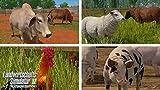 Landwirtschafts-Simulator 17: Platinum Edition