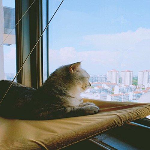 Hamac Pour Chat Essort Transat Fenêtre Pour Chats Hamac Pour Chat
