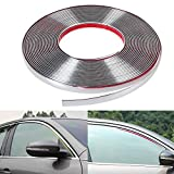 #4: RIDAR Car Side Window Door Edge Guard 15mm Silver Chrome Beading Moulding Roll 10 meter for Honda Mobilio