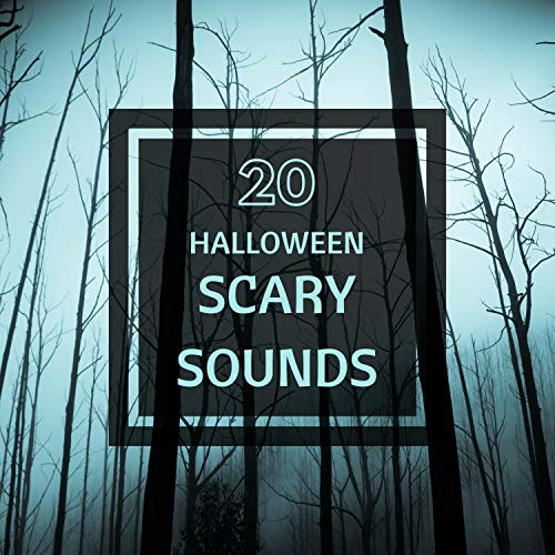 20 Halloween Party Scary Sounds - Creepy Haunted Atmospheric Dark Music for Party, Scary Stories & Horror Nights