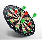 Minihorse-Magnetic Dart Board Durable Safe Plastic Wing Magnetic Darts Target Game Toys (Red Green) Gifts For Kids