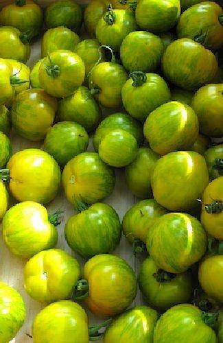 Famous Hungarian Mini Yellow Zebra Tomatos, Best Taste Worldwide !! NON GMO, 20 graines