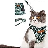 Katzen-Hundegeschirr-Haustier-Weste-Geschirr Führt Leine Für Kleinen Hund Und Katze Täglicher Gebrauch (Farbe : Green, größe : Xs)