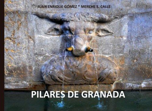 Pilares de Granada: Aguas públicas: Volume 1 (Descubrir Granada)