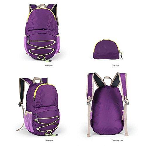 ROBAG Zaino in tessuto nylon impermeabile pieghevole ultra leggero 12L, borsa da escursione esterna , roses red purple