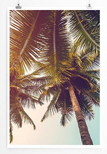 Eau Zone Bilder - Naturbilder – Malerische Palmen- Leinwand Kunstdrucke Wandbilder aus Deutschland