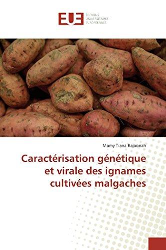 Caractérisation génétique et virale des ignames cultivées malgaches par Mamy Tiana Rajaonah