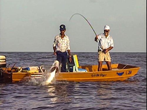 catching-huge-costa-rica-tarpon