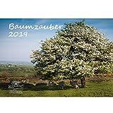 Baumzauber · DIN A3 · Premium Kalender 2019 · Baum · Bäume · Wald · Geschenk-Set mit 1 Grußkarte und 1 Weihnachtskarte · Edition Seelenzauber