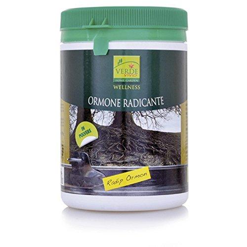 rapid-ormon-polvere-ormone-radicante-in-conf-da-100-grammi