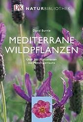Mediterrane Wildpflanzen
