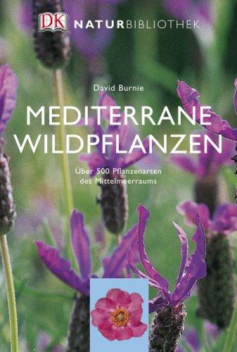 Mediterrane Wildpflanzen (Wildblumen Mediterrane)
