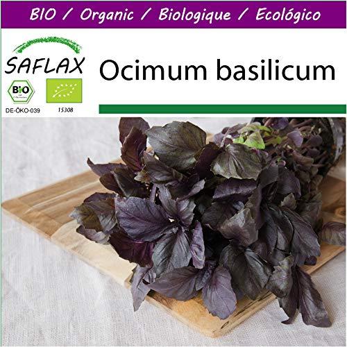 Bio Ocimum basilikum