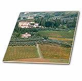 3drose Italien, Toskana. Land & Weinbergen in der Chianti-Region.–Keramik Fliesen, 4-Zoll (CT _ 208949_ 1)