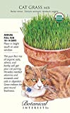 Botanical Interests Organic Cat Grass Mix Seeds 45 Grams