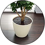 Pack of 8 - Easy Assemble Pot Plant Protector (Medium)
