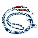 Taumur: zweifach verstellbare Hunde-Tauleine - blau/weiß/rot - Leine für kleine Hunde aus robustem PPM
