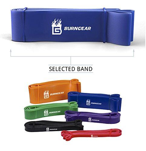 Burngear Premium-Fitnessband | Stretchband für Crossfit-Workout-hilft Muskelgruppen natürlich zu stärken, Unisex-Gummi-Latex-Band für Powerlifting/Yoga/Mobilität/unterstützte Klimmzüge mit dem kostenlosen Übungsguide., Blue, 6.4cm width, 27-68kg -