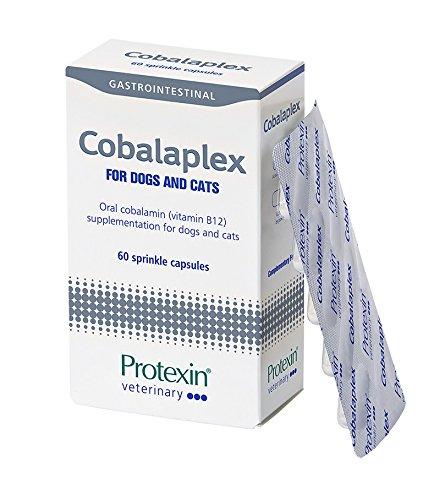 Protexin Cobalaplex 60 Kapseln, Ergänzungsfuttermittel für Hund und Katze, Orales Cobalamin (Vitamin B12) zur Unterstützung des Verdauungstraktes. -