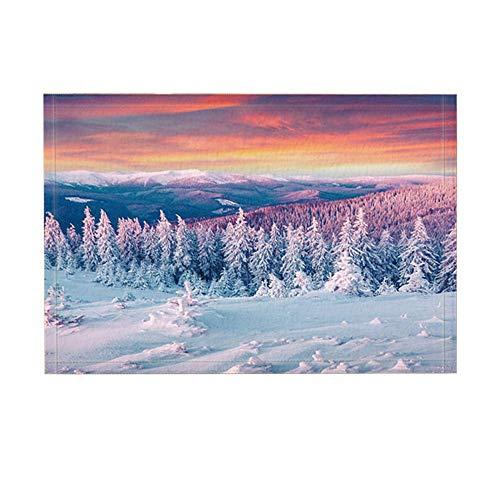 JoneAJ Alfombras baño Invierno Alpes Montaña Nieve