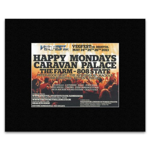 vegfest-uk-festival-2013-happy-mondays-caravan-palace-the-farm-808-state-matted-mini-poster-21x135cm