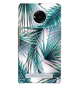 Blue Throat Grass Hard Plastic Printed Back Cover/Case For Micromax Yu Yuphoria