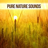 Pure Nature Sounds – Mother Nature Music Collection, Best Streaming Music, Positive Energy, Inner Power