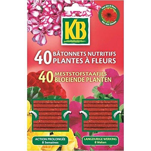 kb-jardin-batonnets-plantes-fleurs-kb-x40-nca