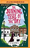 Best Mystery Audio Books - The Burning Issue of the Day Review