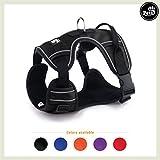 Pets&Partner® Hundegeschirr Outdoor, reflektierendes Geschirr in verschiedenen Farben für mittelgroße bis große Hunde, L, Schwarz