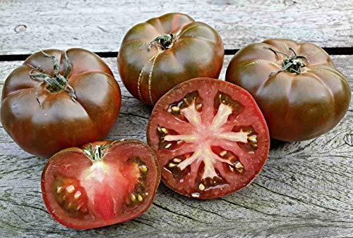 "10 RAF Tomate Samen, Sorte""Sweet Marmande"", süß und lecker"