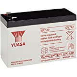 Yuasa NP7-12L Valve Regulated Lead Acid (VRLA) 7000mAh 12V batería recargable - Batería/Pila recargable (7000 mAh, Valve Regulated Lead Acid (VRLA), 12 V, 1)