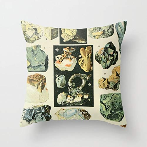 Custom Pillow Covers Personalisierbarer Kissenbezug aus Baumwolle, quadratisch, 45,7 x 45,7 cm Vintage Minerals Chart