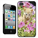 Fancy A Snuggle Coque rigide à clipser motif chaton roux dans un champ de fleurs...