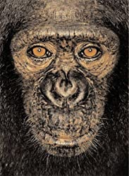 James & Other Apes by James Mollison (2005-07-04)
