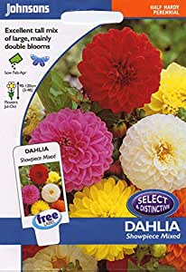 johnsons seeds - Pictorial Pack - Fiore - Dalia Showpiece Mix - 40 Semi