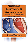 Nursing Anatomy & Physiology: With detailed graphics and descriptions (English Edition)