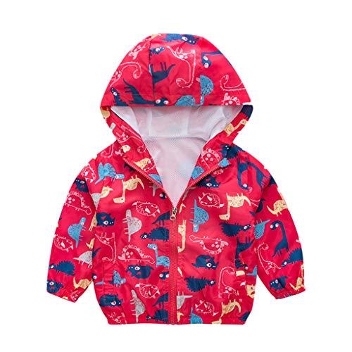 Livoral Kleinkind-Baby-Dinosaurier-Cartoon-Tier mit Kapuze Mantel-Jacke Outwear Windsicher(Q,90)