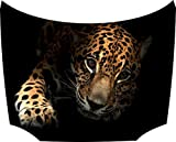 Motorhauben Tattoo Aufkleber Leopard schwarz