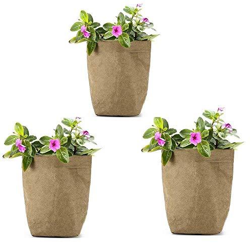 Recipientes para plantas y accesorio Bolsas de cultivo de plantas, paquete de 3 mini suculentas, maceta de flores, bolsa de papel Kraft lavable multiusos, bolsa organizador de artículos varios, bolsas