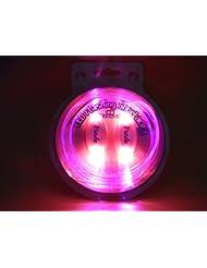 Kailian® LED-blinkende Spitzee Transparent Schnürsenkel 80 cm Länge