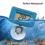 Songway Wasserdichtes digitales Aquarium-Thermometer Mini-Aquarium-Thermometer, zur Verwendung in Aquarien-Aquarien oder Reptilien-Fütterungsboxen, LCD-Display mit Saugnapf
