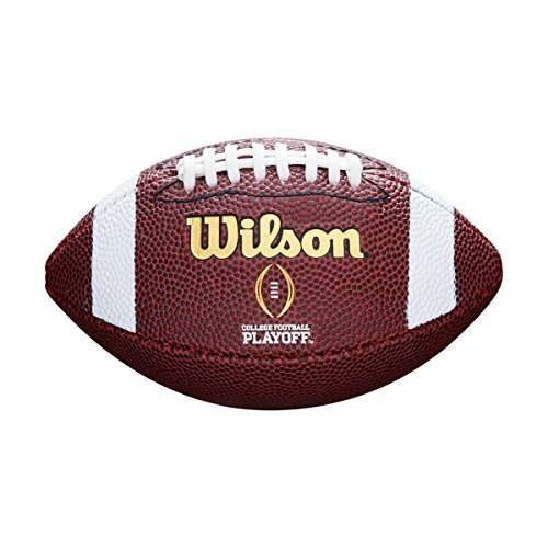 WILSON Football NFL MINI MICRO, Brown, MINI, F1637