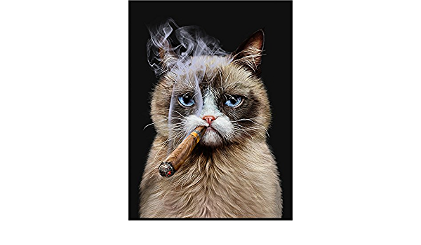 Art Poster Siamese Cat Smoking Cigar Black Matte Paper White Framed A3 Amazon Co Uk Kitchen Home