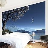 Apalis Vliestapete Winter Fairytale Fototapete Breit | Vlies Tapete Wandtapete Wandbild Foto 3D Fototapete für Schlafzimmer Wohnzimmer Küche | blau, 95047