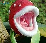 Pflanze Enchantress Fleisch fressende Pflanze Schreibtisch Pot Bonsai Samen Slurperon Samen Insektenfang, 100pcs / bag